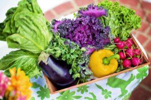 Natur und Biomarkt